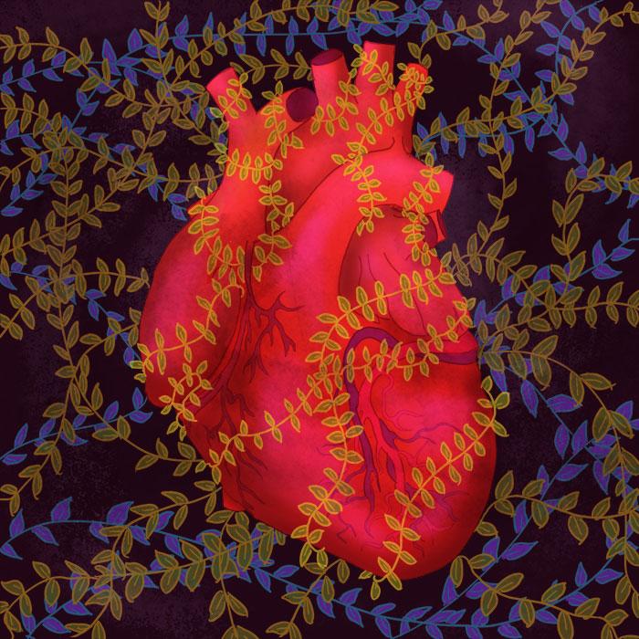 Heart Vines
